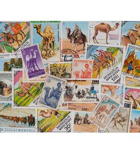 100 Kamele Briefmarke